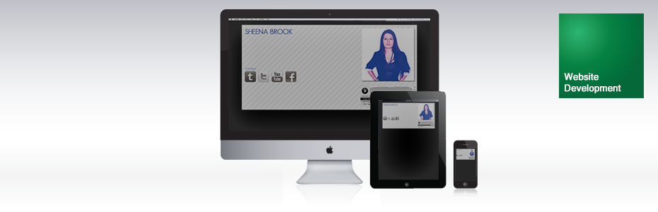 Sheena Brook Website | Venture Consulting Group, Inc. Services | Portfolio